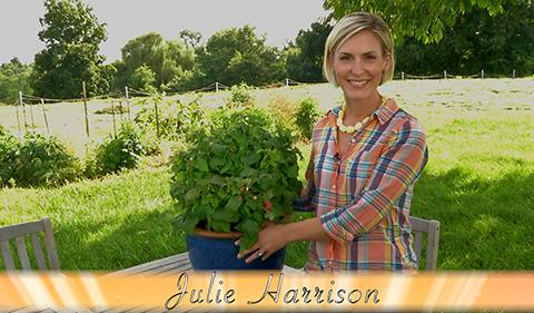 Gardening Blog Video