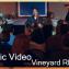 Vineyard-500x281